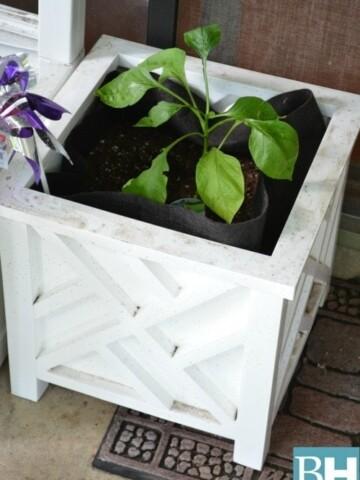 Choosing Garden Containers for your Balcony Garden