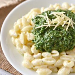 Portobello Mushroom, Kale and Spinach Puree on top of macaroni and cheese with parmesan garnish on white plate and rustic napkin