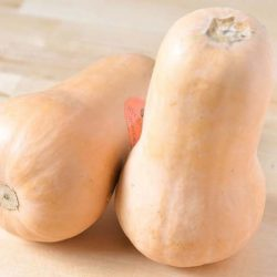 All About Butternut Squash