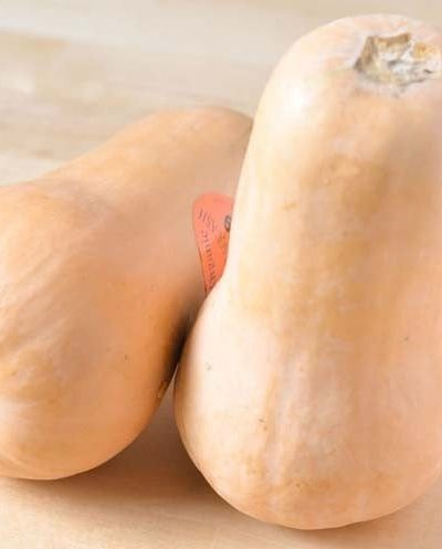 All About Butternut Squash Know Your Produce - Butternut Squash Recipes
