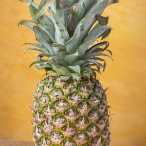 all about pineapple