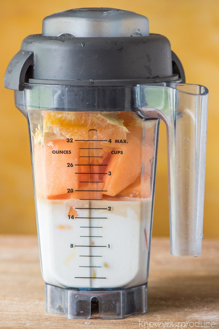 cantaloupe smoothie vitamix recipe