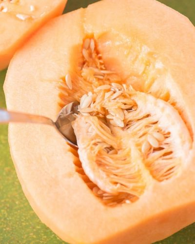 all about cantaloupe