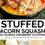 Stuffed Acorn Squash with Quinoa Cranberry Stuffing - vegan, nut free, and a gluten-free side dish or main course.