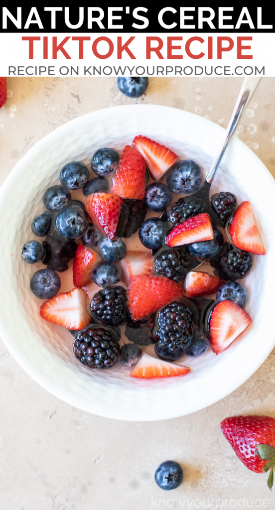 pinterest image with text for natures cereal tiktok recipe